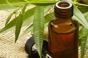 Лечение себореи головы народными средствами чайное дерево