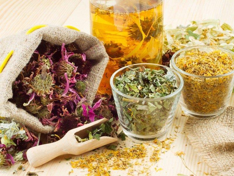 Лечение лишая народными средствами смесь трав