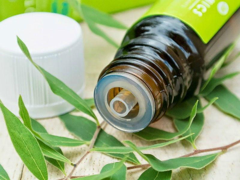Лечение фурункулов народными средствами масло чайного дерева